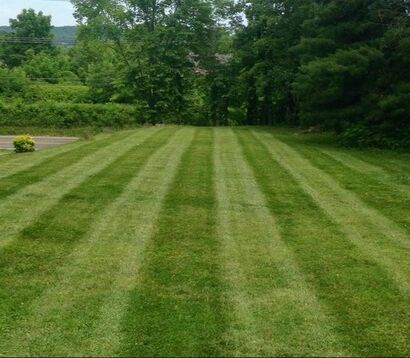 freshly mowed lawn with stipes